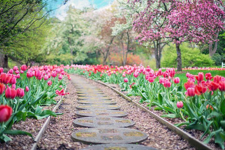 garden path2