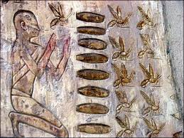 bee archeology