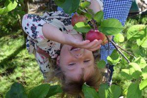 children having fun in the garden