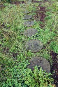 outdoor-garden-pathway