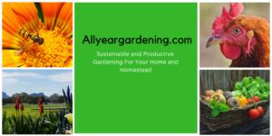 2Allyeargardening.com-1