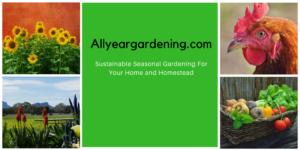 Allyeargardening.com